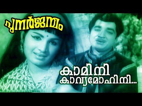 Kaamini Kavya...   Malayalam Old Classic Movie   Punarjanmam   Movie Song