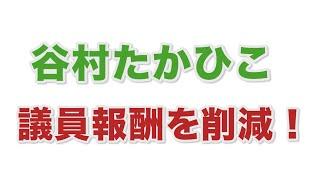議員の報酬削減(谷村たかひこ)