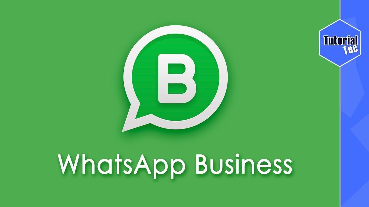 Whatsapp Business Veja Como Funciona Todos Os Recursos Youtube