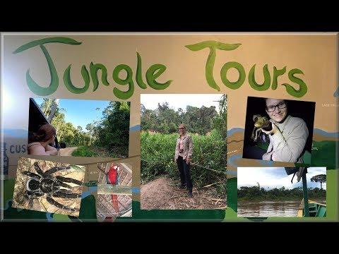 AMAZON » JUNGLE TOURS / South America / Exploring travel