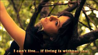 Air Supply-Without You (lyrics)