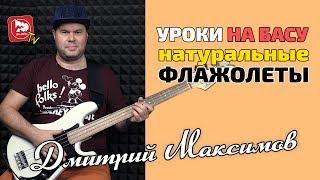 Играем на бас-гитаре: Натуральные Флажолеты