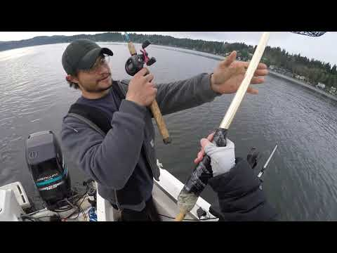 Elgin Fishing God's Tooth Spoons With Reli Lures - Lake Sammamish, WA - 1/5/2019