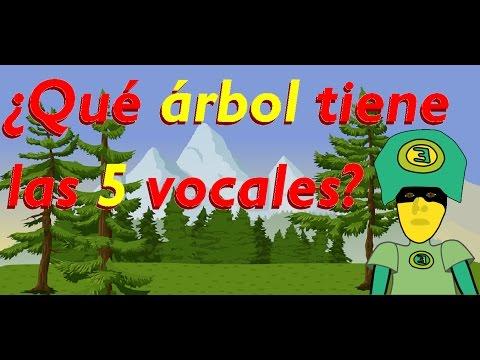 ¿Qué árbol tiene las 5 vocales en su nombre? - adivinanza