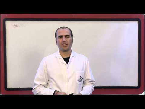 10.Sınıf İngilizce Görüntülü Eğitim Seti (Soru Çözümleri)