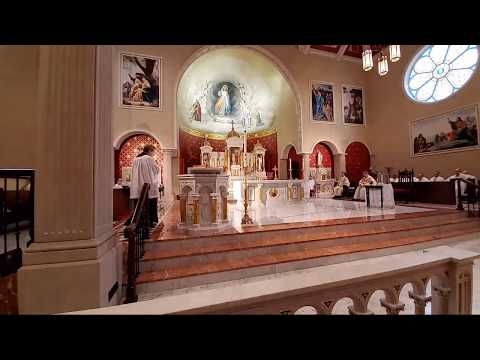 Easter Sunday Mass (Live At 10AM Central Time)