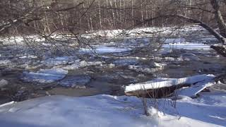 Алтайский ледоход.