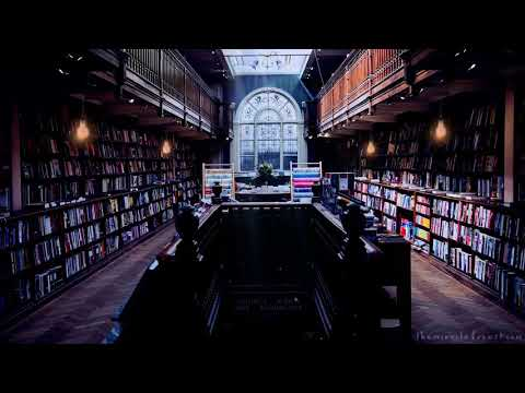 Library Study Session ASMR Ambience