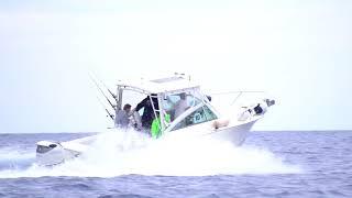 Suzuki Italia Marina alla Ricciola Cup