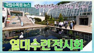 [국립수목원 뉴스] 열대수련전시회 개최