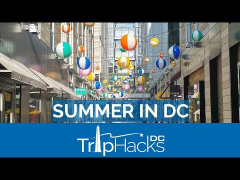 5 BEST Summer Things to do in Washington DC