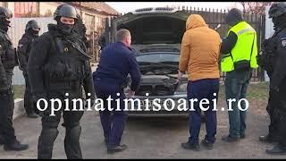 Momentul in care un caine politist gaseste droguri langa Timisoara