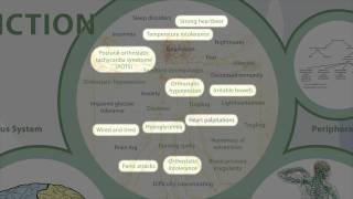 Adrenal Fatigue Related Health Conditions