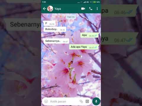 Chat Boboiboy dan yaya