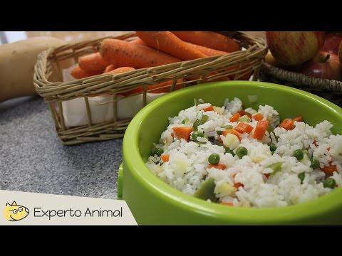 Comida casera para perros - Arroz con verduras