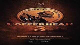 American Milsim Copperhead 3 Airsoft #6 - Technical Down