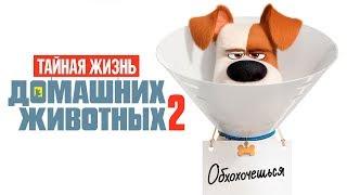 Тайная жизнь домашних животных 2 [Обзор] / [Трейлер 4 на русском]