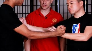 How to Do Taan Da / Gang Da | Wing Chun