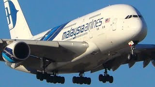 60 BIG PLANES Landing in 30 MINUTES | Entire Morning Rush | Melbourne Airport Plane Spotting