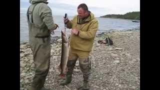 www yamal hunt ru(Трофейная рыбалка на Ямале. Место под названием
