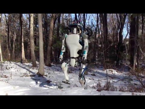 Atlas robot walking on snow