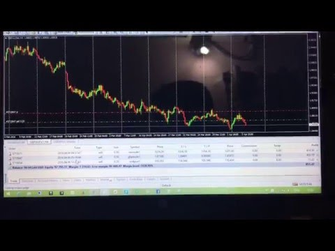 Live running profit on my real account 800 usd
