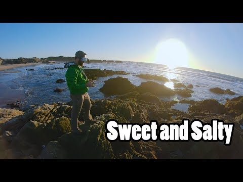 Who Knew Salt Could be so Sweet? // California FreeRange Episode 2