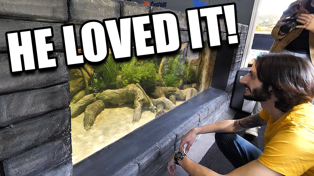 reacting-to-my-aquariums