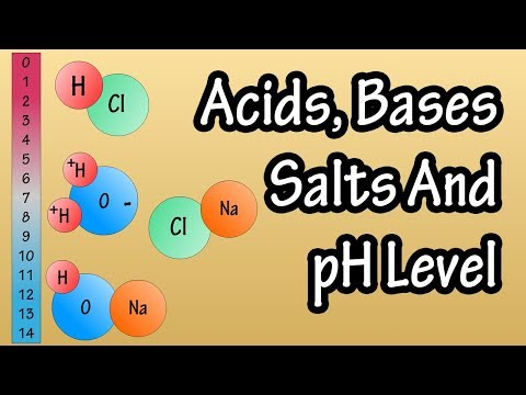 Acids And Bases Salts And pH Level - What Are Acids Bases And Salts - What Is The pH Scale Explained