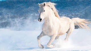 At çiftliğinde haftasonu 🥰