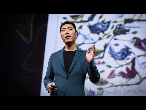 Download Youtube: How digital DNA could help you make better health choices   Jun Wang