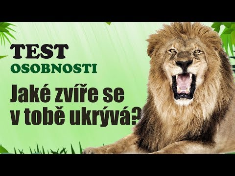 TEST OSOBNOSTI | Zjisti jaké zvíře se v tobě ukrývá
