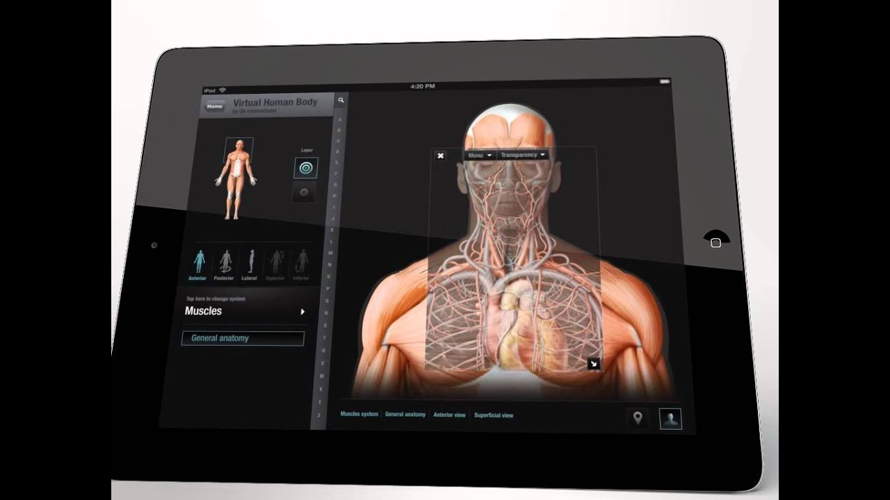 Virtual Human Body Application For Ipad Youtube