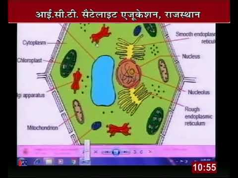 """Rajasthan ICT Satellite Education Science Class-9th""""Structure living organism""""24Jan 2017-18 Lect-56"""