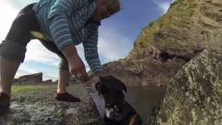 Huxley Learns to swim at Combe Martin