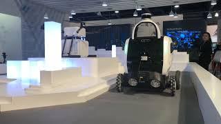 CES Robots 2019