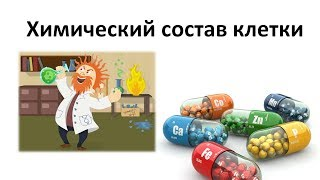6. Химия клетки (5 класс) - введение в Биологию
