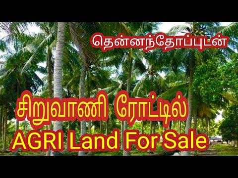 AGRI Land for Sale in Coimbatore I SIRUVANI ROAD I 500+தென்ன