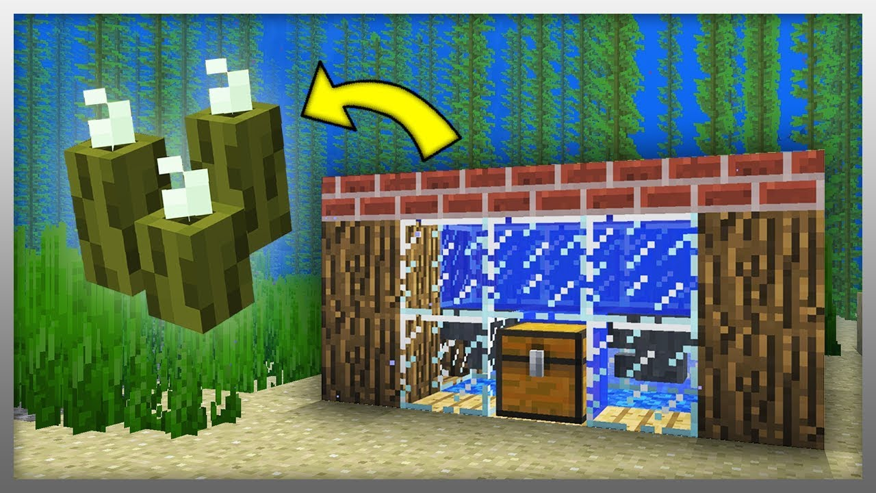 Minecraft 1 13 Sea Pickle Farm Tutorial Aquatic Update Youtube This is my full tutorial on how to build a sea pickle farm in your minecraft bedrock edition survival world. minecraft 1 13 sea pickle farm tutorial aquatic update