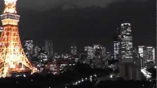 Tokyo ~Night Skyline~