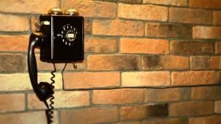 """YELL TV Ufa @ Ресторан """"Черная кошка"""""""