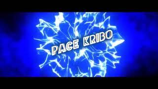 Lagu Acara Terbaru 2019-Eminem Remix-Pace Karibo Music