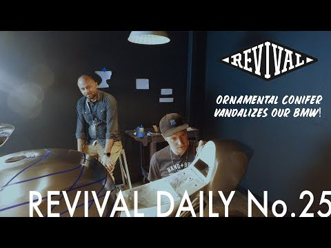 Ornamental Conifer Vandalizes Our BMW!!! // Revival Daily No. 25