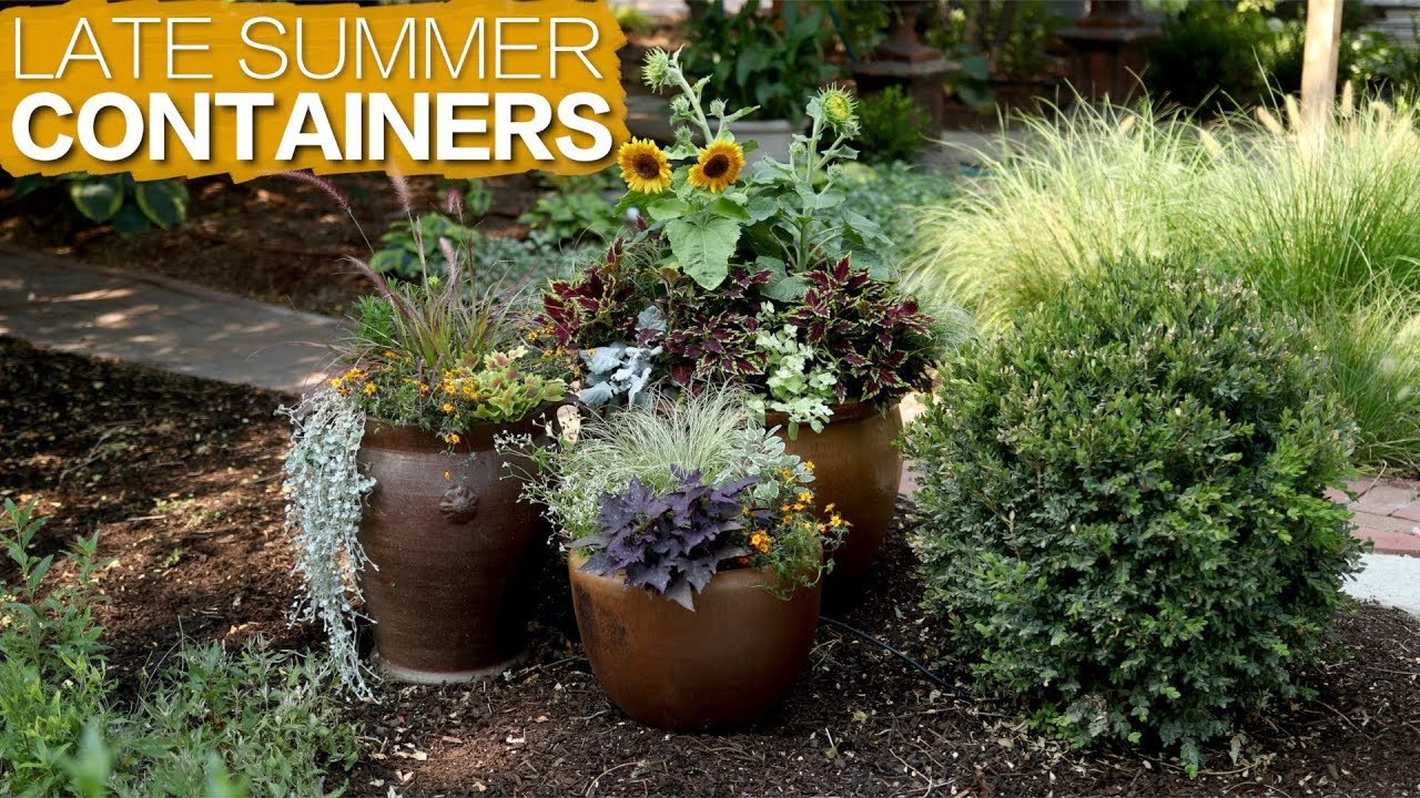 Late Summer Containers Garden Answer Youtube