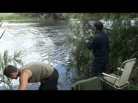 Tench Fishing In Northampton
