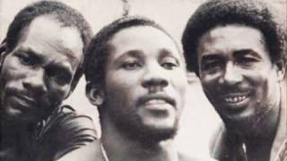 Watch Toots  The Maytals Revolution video