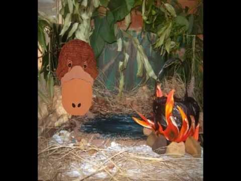 1: Wombat Stew