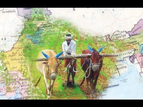 agriculture in india after independence