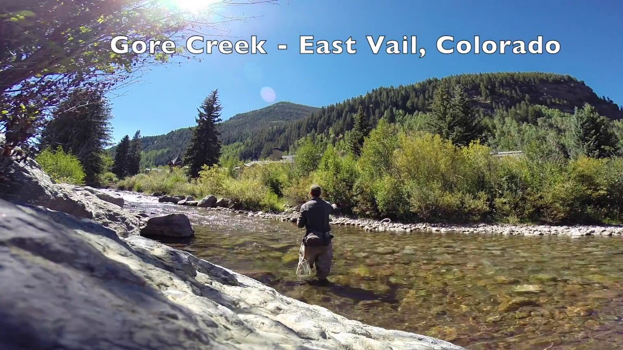Fly fishing gore creek vail colorado 2016 youtube for Fly fishing vail colorado