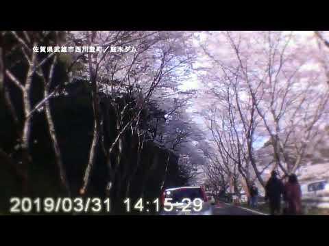 佐賀県武雄市西川登/庭木ダム-2019.3.31